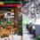 Thiết kế quán cafe tại Bình Dương rẻ đẹp trọn gói – LH: 0902.868.883