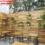 Thiết kế quán trà sữa ngoài trời tại buôn ma thuột – LH: 0902.868.883